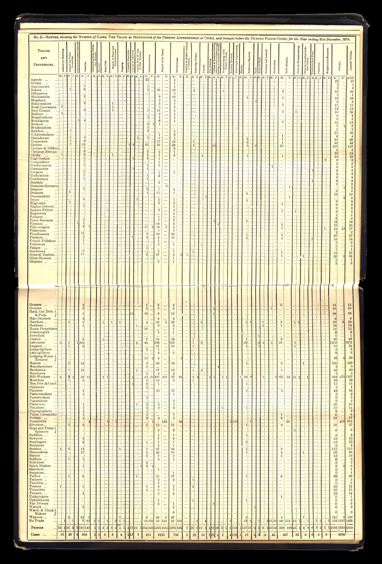 Dundee City Police Annual Criminal Returns 1876–77
